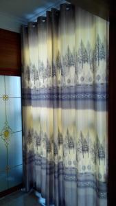 白丝万博体育manbetx3.0布-木棉树